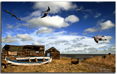 The Boat House in Explore (DDA / Deljen Digital Art) Tags: uk greatbritain sea england cloud beach landscape boat scenery timber gulls flight shed northumberland boathouse winch beadnell