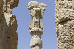 capital, Persepolis (luca.m.) Tags: iran persia archeology persepolis ach zagros achemenide archologie