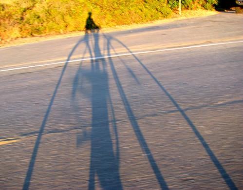 bikeshad