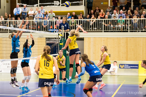"3. Heimspiel vs. Volleyball-Team Hamburg • <a style=""font-size:0.8em;"" href=""http://www.flickr.com/photos/88608964@N07/32694278901/"" target=""_blank"">View on Flickr</a>"