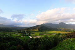 Dawn Breaking on the Hanalei Valley (John Petrick) Tags: hawaii kauai hanalei hanaleivalley d90 hawaiivacation kauaihawaii kauaivacation hanaleikauai hanaleioverlook hanaleivalleylookout hanaleitarofields hanaleihawaii hanaleitaro tokina1116mm princevillelookout hanaleiatdawn hanaleimorning princevilleoverlook