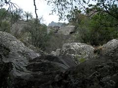 Ravin vers le Pinzu Scaffone