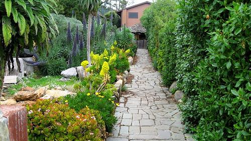 Sun Center garden
