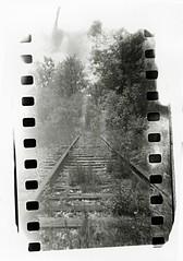 Holga: Railroad Tracks