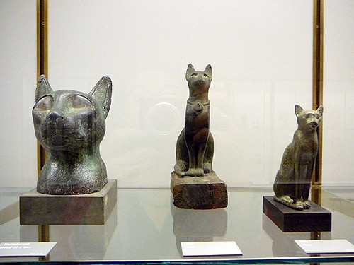 Egyptian Cats