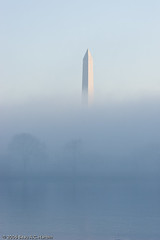 Washington Monument in early morning fog (BACHarbin) Tags: trees usa mist fog arlington washingtondc dc still districtofcolumbia memorial quiet personal photoblog va obelisk nationalmall washingtonmonument georgewashington potomacriver fogbank submittedtophotoshelter nationalmallandmemorialparks