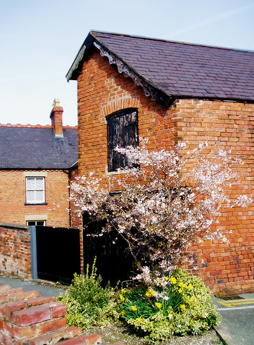 Old stable, Ruthin
