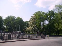 Summer Garden (alice_plus) Tags: stpetersburg hometown