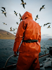 Oil_Skin (coreyfishes) Tags: ocean sea snow color ice dutch weather alaska danger harbor photo fishing fisherman king arnold picture wave crab corey catch kingcrab discovery harsh beringsea crabbing rollo bering snowcrab opilio deadliest deadliestcatch coreyfishes