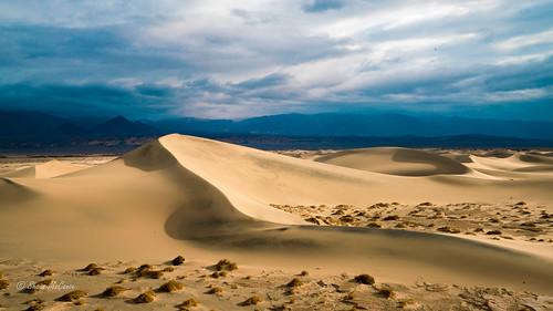 Desert in the Rain