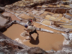 Salinas (Marco Di Fabio) Tags: travel mountains southamerica water inca america montagne workers agua mine factory sale south salt valle per salinas salty valley sacred andes sur ponds acqua tinas saline sagrada saltmine salada sacredvalley sal fabrica tubs sud maras incas montanas sudamerica trabajadores ande basins salata fabbrica sobeautiful cubas vallesagrada operai americadelsur supershot saltwork vasche anawesomeshot betterthangood nginationalgeographicbyitalianpeople peruvianimages wondefulplaces lpruck febbraio2011challengewinnercontest