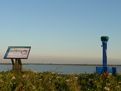 oostvaardersdijk (sasterpstra) Tags: flevoland lelystad flevopolder oostvaardersdijk sasterpstra