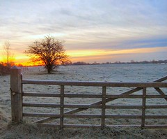 Winter scene from the Maas (Hummerbie) Tags: thenetherlands maas winterlandscape