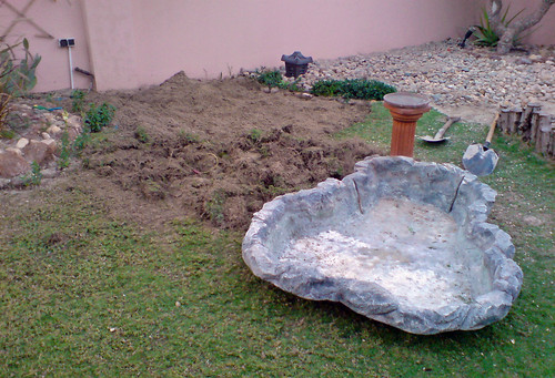 Holiday project number 3, move the old pond!