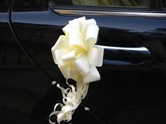 Mariage (Giovanna Angeloni) Tags: sville andalousie