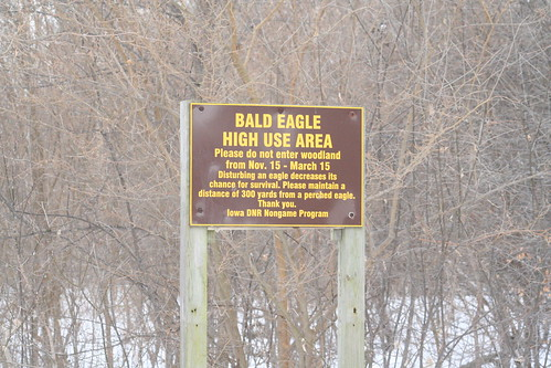 bald eagle sign