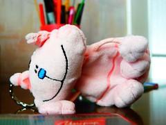 kotek (stanislawborzecki) Tags: cat toy kot zabawka