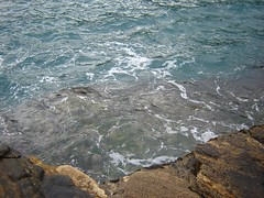 Foca (helio.ricardo) Tags: praia mar natureza praiadafoca