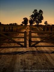 Poema telrico (DrGEN) Tags: santa trees sunset santafe argentina atardecer blog gate rboles poem country yo rosario campo fields tranquera fe gen ocaso mundo ceres veo poema drgen goldstaraward