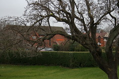 Sainsbury's, through the trees of Bancroft Gardens, Hitchin