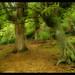019x04 Falsedades de la Historia - Bosque Encantado de Orrius