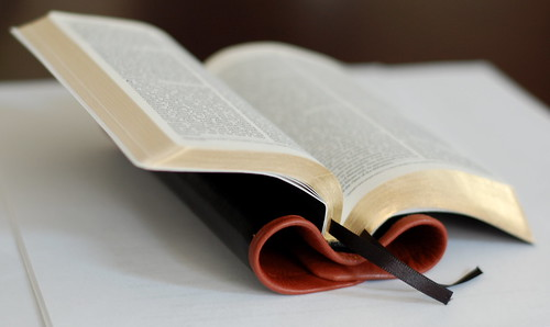 Compact Thinline ESV from LeatherBibles com — Bible Design Blog