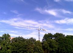 Trees, Crane, Sky