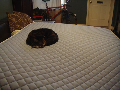 Isn't quite ready to give up the old mattress