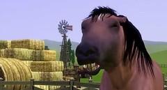 Sims 3 Pets 2