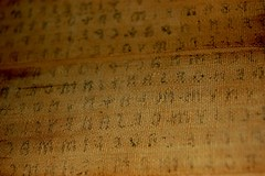 Closeup on the Linen Book/Mummy Wrappings of the Lost Etruscan Language (Curious Expeditions) Tags: writing book linen text egypt croatia zagreb egyptian language mummy archeology etruscan curiousexpeditions lostlanguage liberlinteus