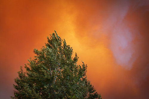 Canyon Country Fire