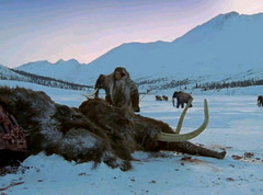30 man returns to mammoths grave