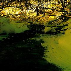 "Shhhhhhhhhh!!! :))) (Denis Collette...!!!) Tags: winter snow canada ice angel bravo quebec hiver ange rivière rest neige exile glace exil enya repos sauvage ""deniscollette"" «wildriver» «santaclaus» «pèrenoël» explorewinnersoftheworld"