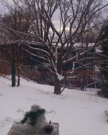 snowcrone