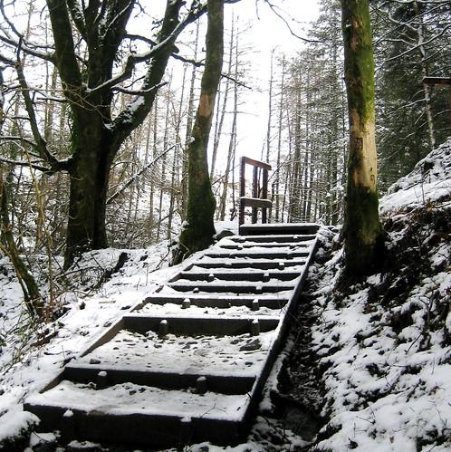 Kelburn step in snow
