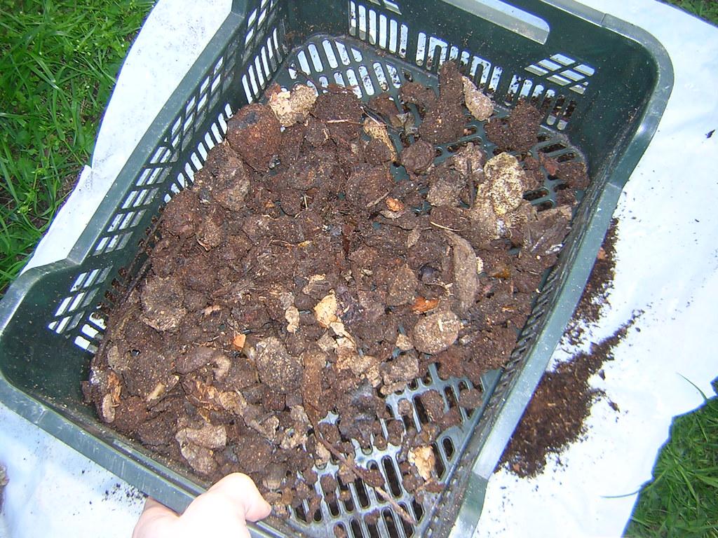 Mi compostador!! 2318388518_928006ca71_b