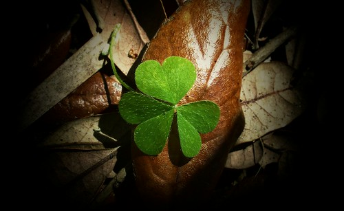St. Patrick's Day Blessings por celticsong22- I have company! Be back soon!.