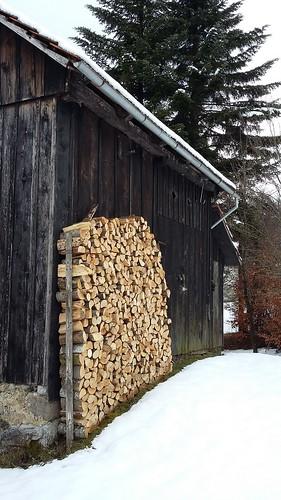 drvo gornji sajn