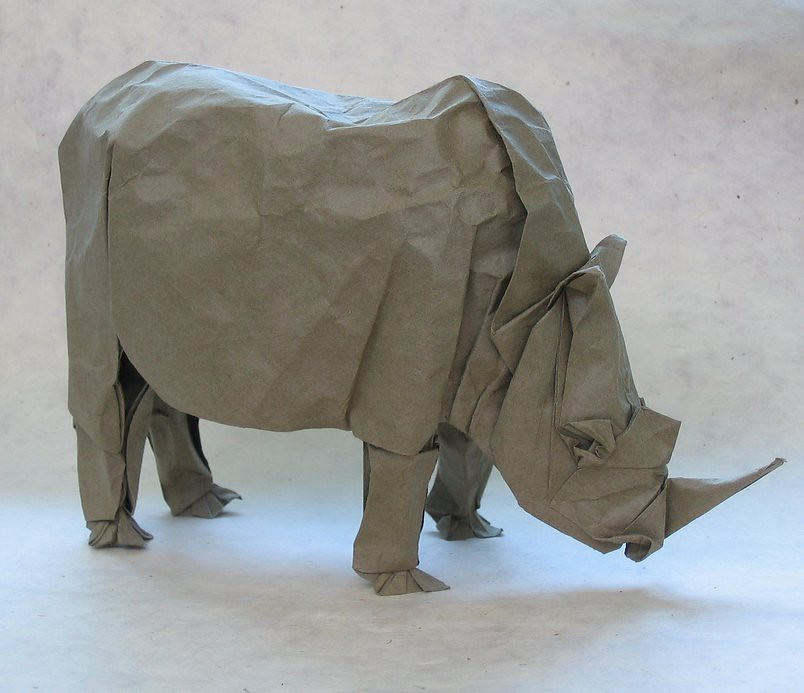 The Worlds Most Recently Posted Photos Of Folding And Rhinoceros