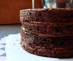 Malted Chocolate Buttermilk Cake (ComeUndone) Tags: cake dessert baking chocolate layer bourbon buttermilk doriegreenspan bakingfrommyhometoyours maltedmilkpowder