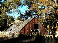 Wounded Barn (judi berdis) Tags: usa soe nca willits mendocinocounty shieldofexcellence ibeauty mm3010rt20