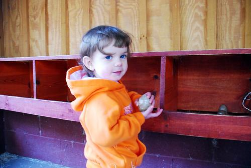 Zoo playground 049