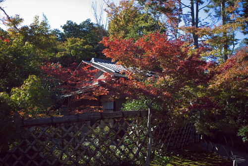 Koetsuji temple (光悦寺)
