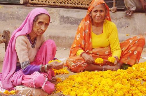 Marigold Maidens
