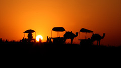 Sunset at Pushkar- Pushkar Fair 2007 (http://www.sarikagulati.co) Tags: sunset canon fair pushkar camels rajasthan camelcart sarikashuangren naturewatcher sarikagulatiphotography sarikagulatiphotographer wwwsarikagulatico