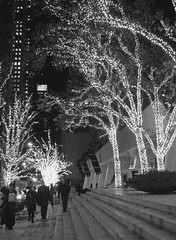 Wintertime in New York City (Nicole Marti) Tags: christmas street nyc newyorkcity light blackandwhite bw holiday tree architecture night stairs angle manhattan decoration perspective christmaslights candycane solow solowbuilding abigfave anawesomeshot bwartaward