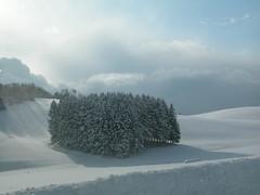 paesaggio innevato (marta.g) Tags: neve asiago
