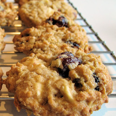 Cranberry  and white chocolate cookie 2388 b