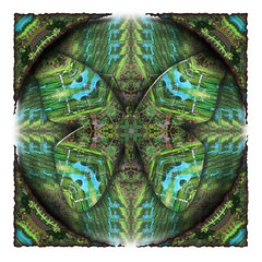 Design  (Butterfly)  ~(K-FUN#6)~ (Gravityx9) Tags: friends abstract photoshop altered chop experimentation fabulous multicolored picturesque magical outofthisworld specialeffects blogthis smorgasbord ithink kaliedoscope americaamerica kfun psart anawesomeshot wowiekazowie eyecandyart psjunkies colourartaward kuwaitartphoto coloursplosion artphotoshopstyle mike3950 021608 totalphotoshop kaleidospheres allkindsofbeauty kfun6 kfunmedallists envyenvied