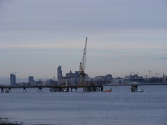Liverpool from New Ferry (Liverpool Suburbia) Tags: skyline liverpool 2008 liverbuilding rivermersey fromnewferry